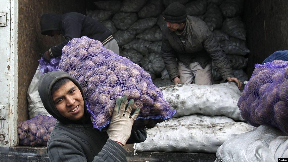 таджикские мигранты работают грузчиками