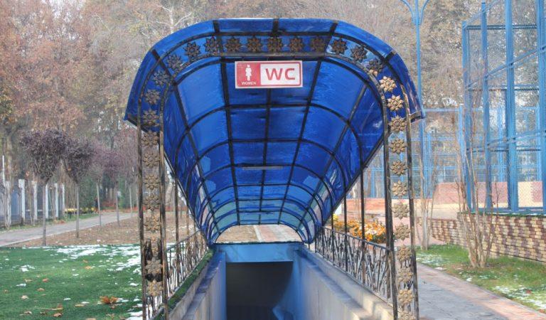 «Нужда до Кира Великого доведет». Где в центре Душанбе можно найти туалет?
