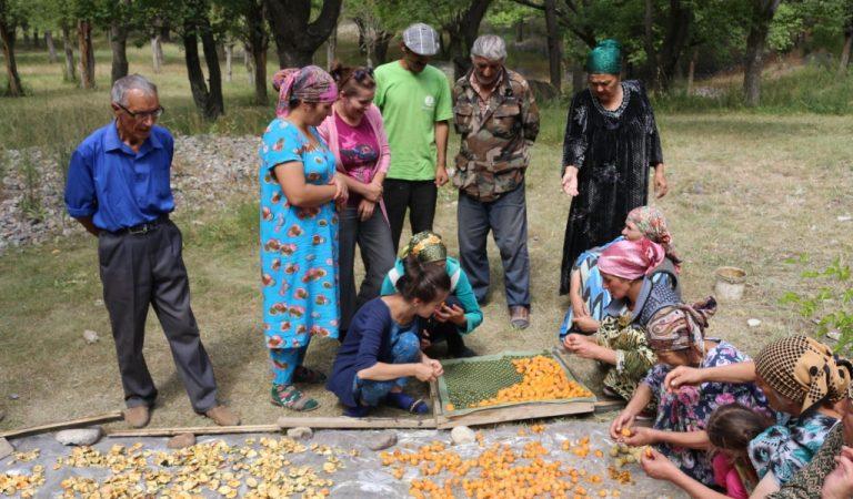 Как жители высокогорного Памира адаптируются к изменению климата
