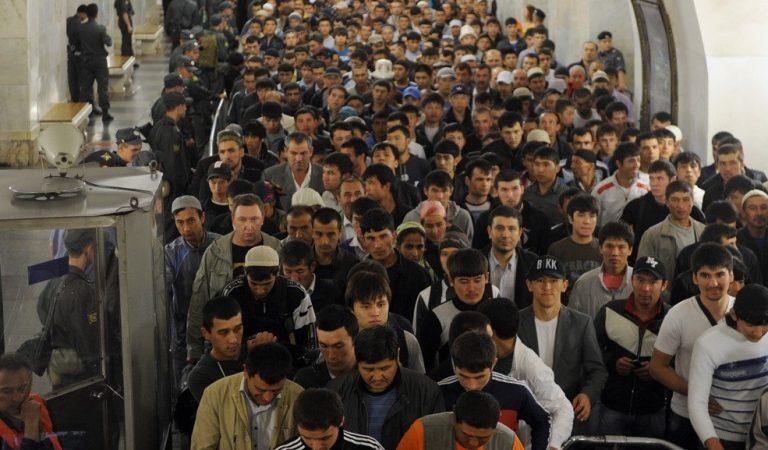 Видеоэксперимент: как таджикские и кыргызские мигранты помогают друг другу